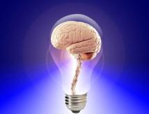 32e Journée de Neuropsychologie aux Vignes, 13/12/19, Colmar